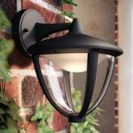 Philips Robin LED outdoor wall light black, down